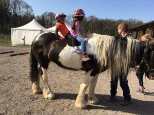 Spiel und Spaß mit dem Pferd @ Hadorf bei Starnberg