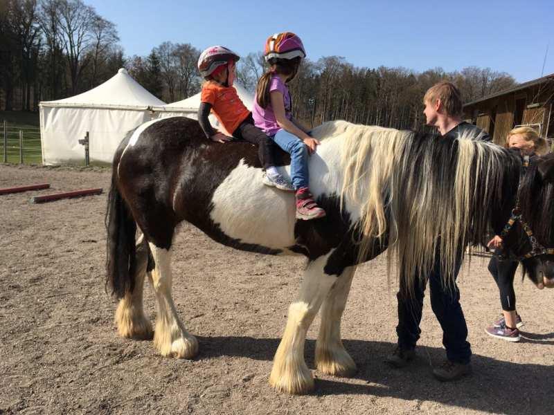 Spiel und Spaß mit dem Pferd Termine
